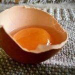 egg opened holding egg yolk and white inside
