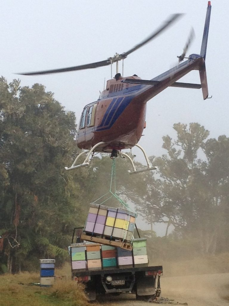 helicopter lifting bee hives on to the back of a ute truck