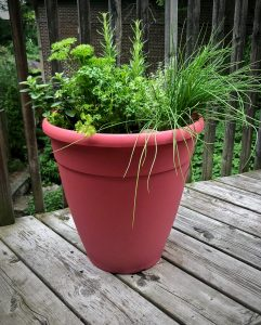 a red pot with mixed herbs growing on a wood balconey
