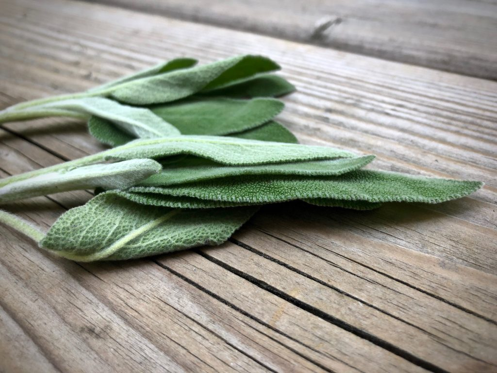 sage leaves on an old wood plank
