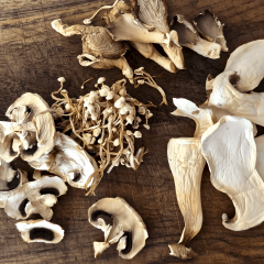 A variety of mushrooms dehydrated on a wood board