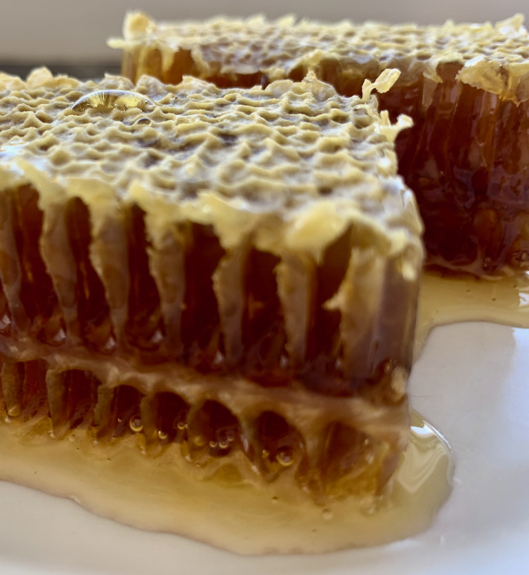 raw honey in the comb