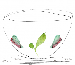 Sketch of a bowl with three leaves