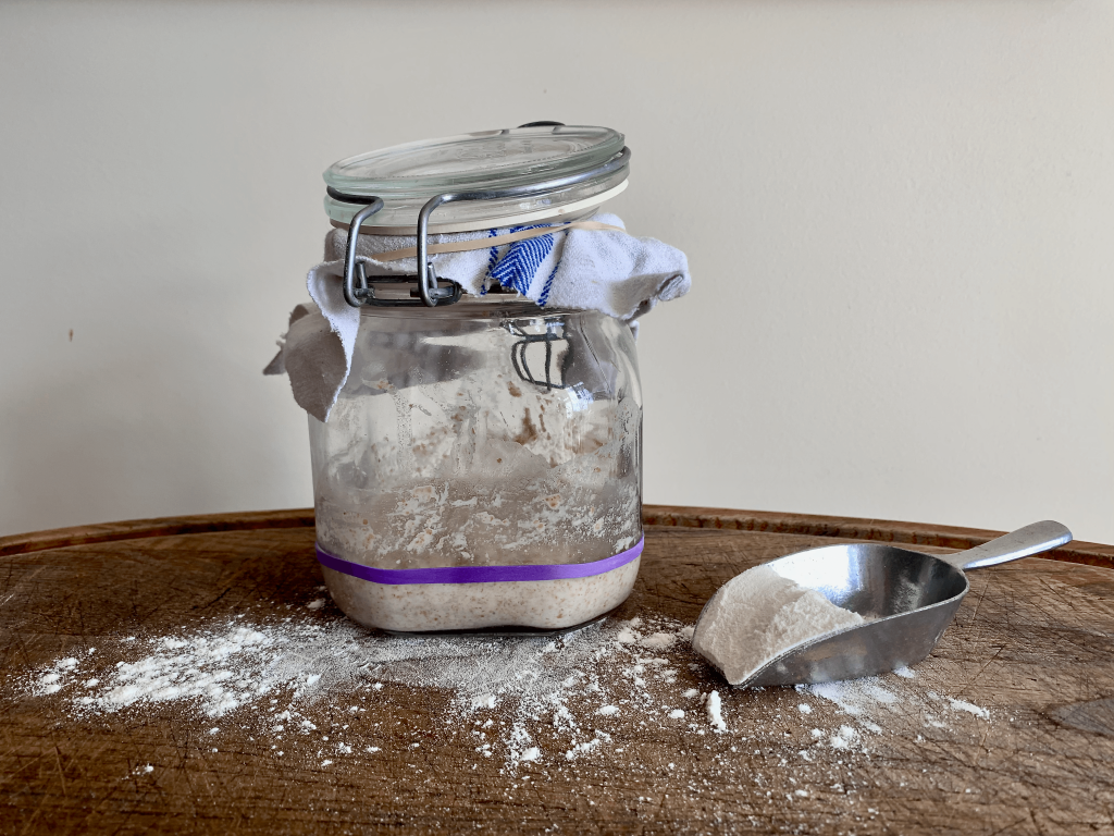 Jar of starter on a board with flour and a measuring spoon. Jar has rubber bands in place to measure the growth of the starter