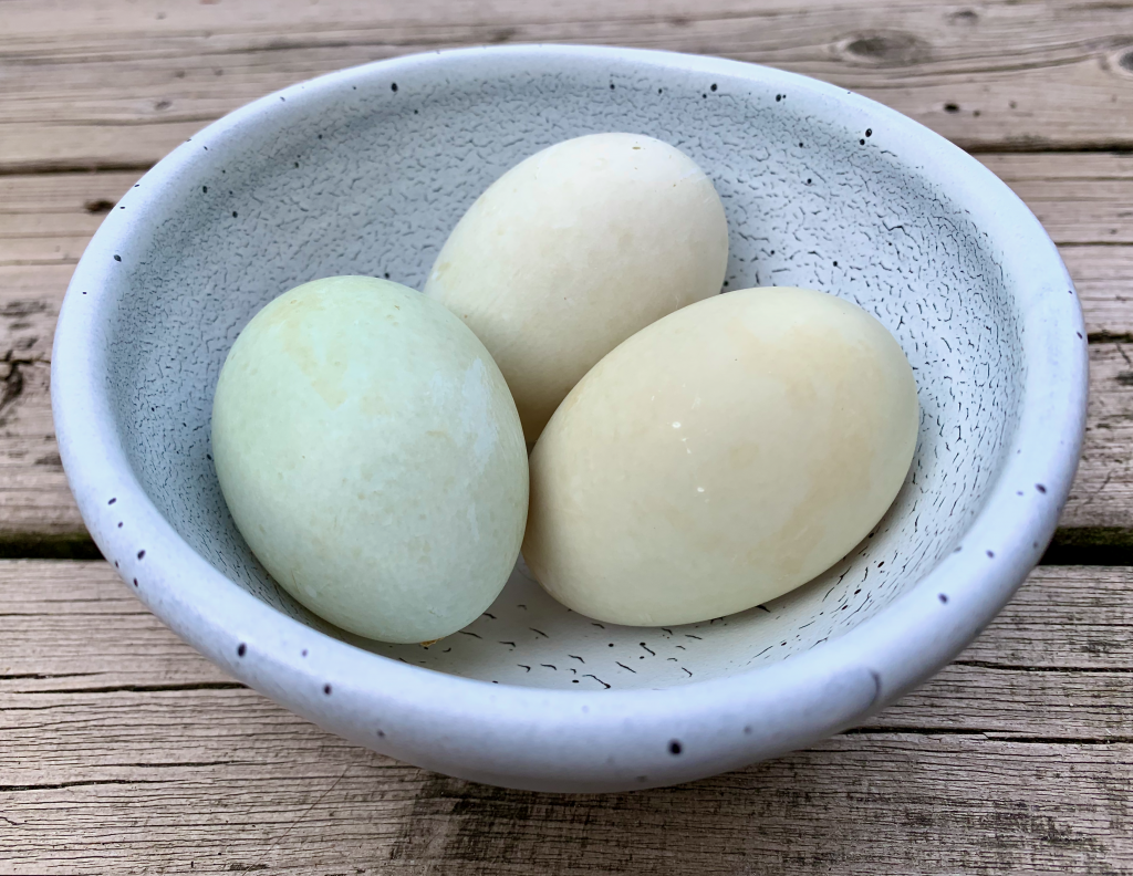 3 duck eggs in a bowl