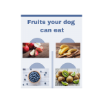 1/3 of a poster with apples, banana, blueberries and kiwifruit