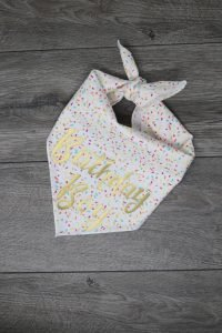 Confetti covered bandana with Birthday Boy for your pet