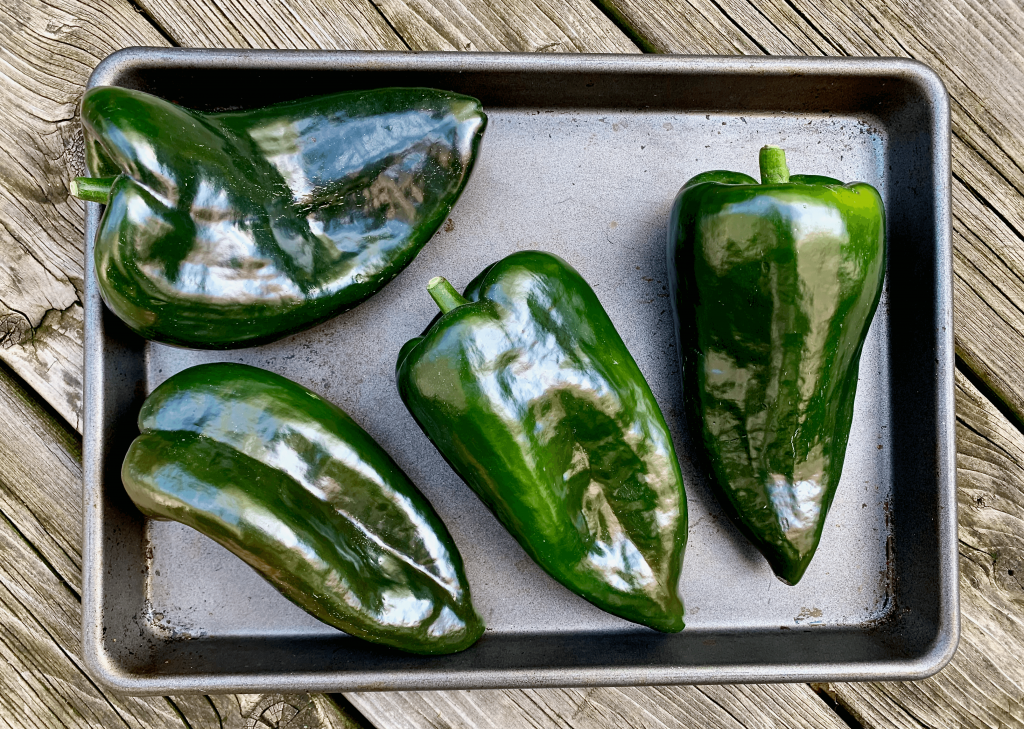 Poblano peppers add spice to the soup and make a great garnish