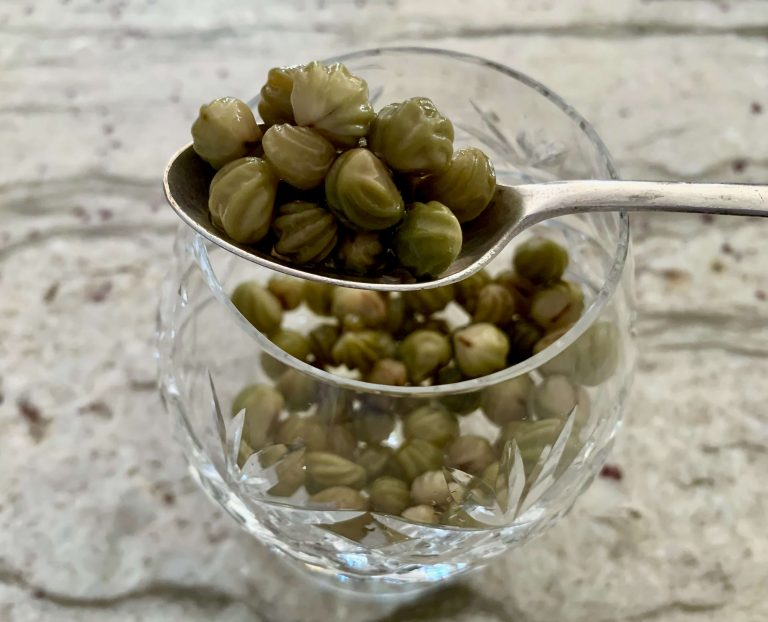 Poor Man's Capers are pickled nasturtium seeds and they are lovely!