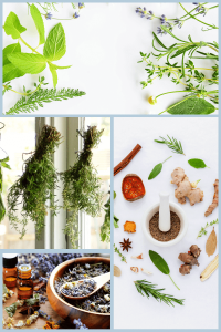Herbs and spices to vacuum seal